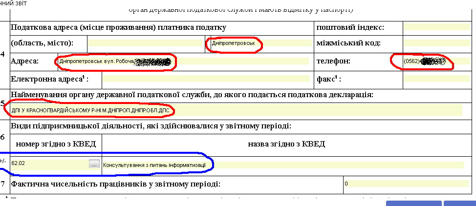 iFin, Отчет, страница 2